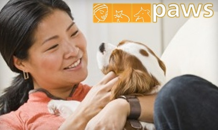 PAWS NY: Donate $11 to PAWS NY to Start an Emergency Fund to Help Elderly and Disabled People Keep Their Pets