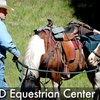 Up to 74% Off Horseback-Riding Lessons