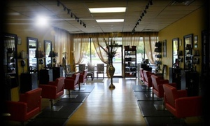 Salon Art Hair Designers~Melissa Hofacker: $16 for $35 Worth of Services — Salon Art Hair Designers~Melissa Hofacker