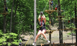 Treetop-Climbing and Ziplining Course for One or Two at Grand Rapids Treetop Adventure Park (Up to 33% Off)