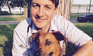Vet Partners Pet Hospital: $28 for $60 Worth of Veterinary Services — Vet Partners Pet Hospital Edina