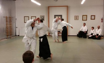 image for $18 for $70 Worth of <strong>Martial-Arts</strong> Lessons — Kansas Ki Society