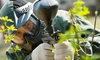 Go Paintball USA - Lincoln Paintball: Paintball Package for Two, Four, or Six from Go Paintball USA (Up to 84% Off)