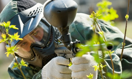 Paintball Games, Gear Rental, and Paintballs for Two or Four at Timberline Adventure Park (Up to 48% Off)