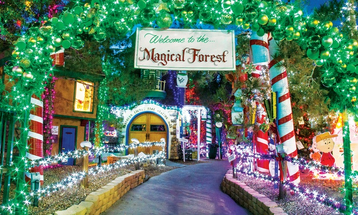 10. Opportunity Village's Magical Forest