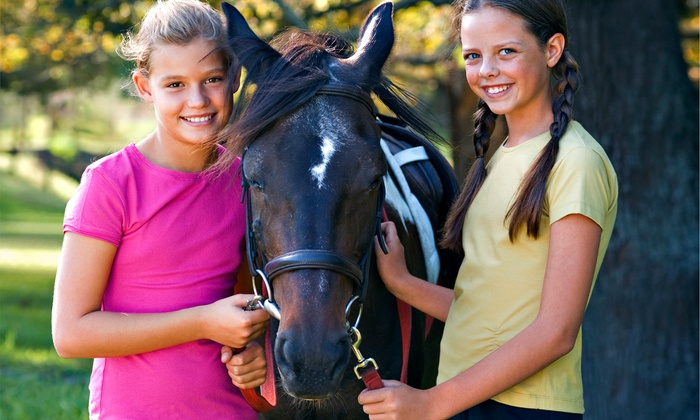 White Briar Farms - Eno: Kids' Five-Day Equestrian Camp at White Briar Farms (Half Off). Three Options Available.