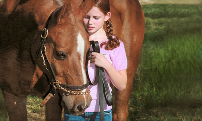 Timbermist Farm - 291 Hwy: Tiny Tot or Beginner-Intermediate Horseback-Riding Camp for One or Two at Timbermist Farm (Up to 55% Off)