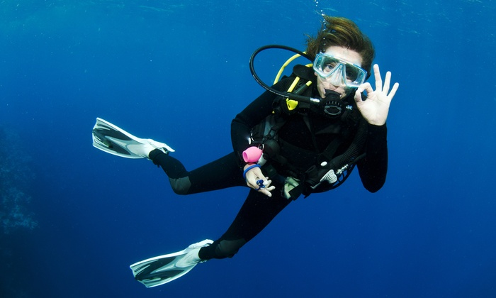 Lowcountry Scuba - Mount Pleasant: $413 for an Open Water Course and Certification at Lowcountry Scuba ($790 Value)
