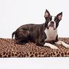 100% Memory Foam Orthopedic Pet Bed Crate Mat