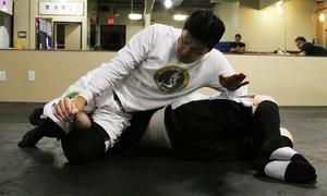 BAEK Brazilian Jiu Jitsu: One-Month Brazilian Jiu Jitsu Membership for One or Two at Baek Brazilian Jiu Jitsu (Up to 83% Off)