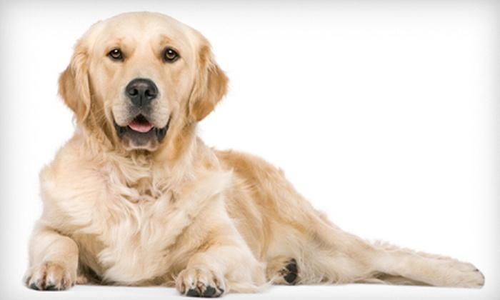 Barkley's Dog Wash - Lake Park: $15 Toward Dog Grooming, Boarding & Classes