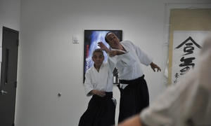 Aikido Of Alamo: $33 for $100 Worth of Martial-Arts Lessons — Aikido of Alamo