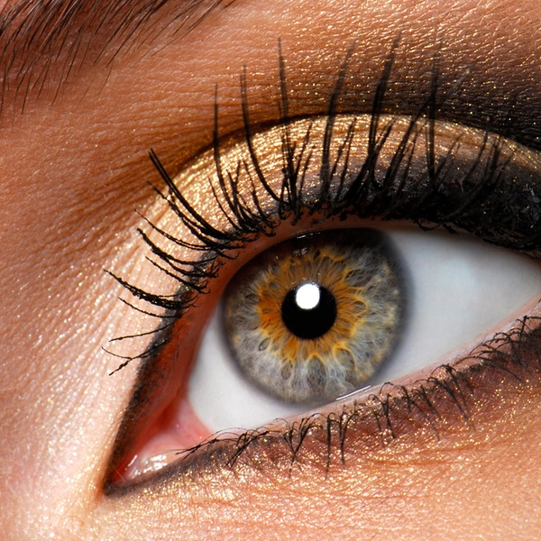 8a6265e701d Full Set of Eyelash Extensions - Lux Studio - Illford | Groupon