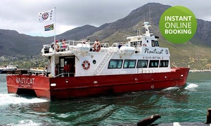 Nauticat Charters: Boat Trip on the Glass Bottom Nauticat Charter from R80 for Two Adults with Nauticat Charters (50% Off)