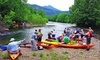 Twin River Outfitter - Buchanan: Canoe or Kayak Trip for One or Two from Twin River Outfitters (Up to 44% Off)