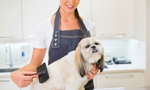 Amy's Grooming Boutique: Dog Grooming Service at Amy's Grooming Boutique (Up to 48% Off)