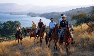 """חוות הסוסים ורד הגליל: חוות ורד הגליל, לרכב בנופי הכנרת, הרי הגליל והגולן: 89 ₪ לשעת רכיבה על סוסים. תקף גם בסופ""""ש"""