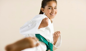 My Dojo: 5 or 10 Martial-Arts and Anti-Bullying Classes, or After School Martial-Arts Classes at My Dojo (Up to 88% Off)