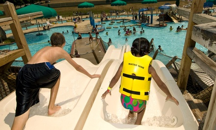 Water-Park Packages at Water Mine Family Swimmin' Hole (Up to 42% Off). Three Options Available.