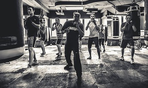 Paul Brown Boxfit: 5 or 10 Intro Boxing or Muay Thai Group Classes or One Month of Classes at Paul Brown Boxfit (Up to 85% Off)
