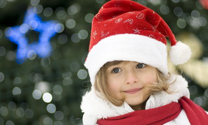 image for Christmas Farm Entry for Family of Five at Red Mountain Open Farm (60% Off)