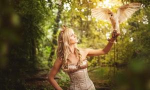 skyhunters in nature Falknerei: 1,5 Std. Spaziergang mit Greifvögeln für 1 oder 2 Personen bei skyhunters in nature Falknerei (bis zu 51% sparen*)