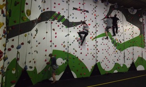 Golden Gecko: One-hour Climbing Session on the Challenge Wall for One or Two at Golden Gecko