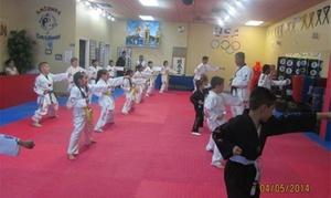 Arizona Dragons Taewondo, Llc: Four Weeks of Unlimited Martial Arts Classes at ARIZONA DRAGONS OLYMPIC TAEKWONDO TRAINING CENTER, LLC (55% Off)