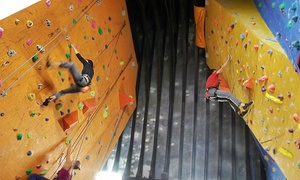 Alter Rock Climbing Centre: Alter Rock Climbing Centre: Introductory Lesson from £14 (Up to 57% Off)