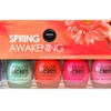 Color Secrets 6-Piece Spring Awakening Nail Lacquer Set