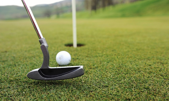 Mr. Golf - Bellevue: Nine Holes of Golf with Extra Large Bucket of Range Balls for Two or Four at Mr. Golf (Up to 46% Off)