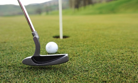 Nine Holes of Golf with Extra Large Bucket of Range Balls for Two or Four at Mr. Golf (Up to 46% Off)
