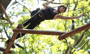Sommerbobbahn  Erpfingen: Eintritt in den Kletterpark für 1, 2 oder 4 Personen bei der Sommerbobbahn Erpfingen (bis zu 55% sparen*)