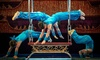 Acrobats of China - Yakov's Theatre: Acrobats of China (Through July 14)