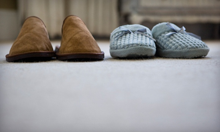 Eco Carpet Cleaning - Englewood: $20 Toward Carpet Cleaning and Home Care