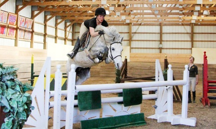 Horseback-Riding and Grooming Lesson for One, Two, or Four at Spruce Meadow Farm (Up to 69% off