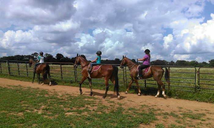 Daybreak Farm - Mount Juliet: Two Horseback-Riding Lessons at Daybreak Farm (45% Off)
