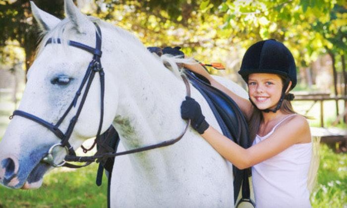 Silverfox Farm - Ashburn: Two or Four Horseback-Riding Lessons at Silverfox Farm (Up to 64% Off)