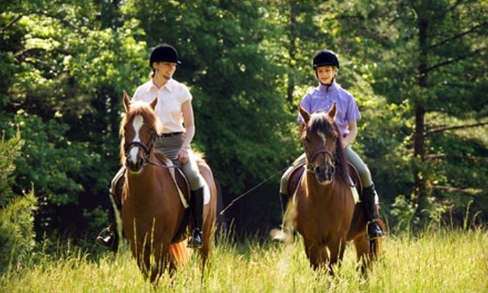 Seaton Hackney Stables - Morris: $65 for a Semiprivate Horseback-Riding Lesson or Horseback Trail Ride for Two at Seaton Hackney Stables ($130 Value)