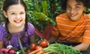 The Cooking School at Irwin Street - Old Fourth Ward: Intro, After-School, or Summer-Camp Cooking Classes for Kids at The Cooking School at Irwin Street (Up to 58% Off)
