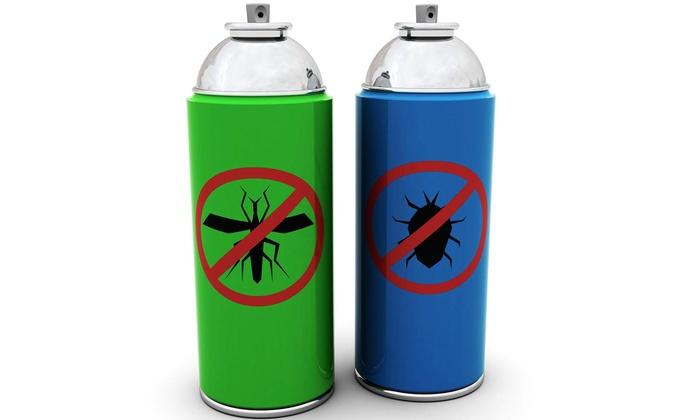 Bugs free - Boston: $330 for $600 Groupon — Bugs free