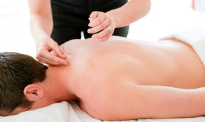 Minal Patel L.Ac.: Consultation with One or Three Acupuncture Treatments from Minal Patel L.Ac. (Up to 85% Off)