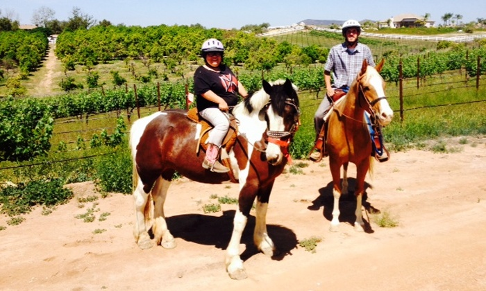 Big Sky Ranch - Murrieta: Private Horseback Trail Ride for One, Two, or Four with Wine Tasting at Big Sky Ranch (Up to 58% Off)
