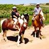 Up to 50% Off Horseback Trail Ride at Big Sky Ranch