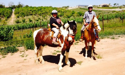 Private Horseback Trail Ride for One, Two, or Four with Wine Tasting at Big Sky Ranch (Up to 51% Off)