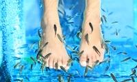 Ictioterapia con higiene y masaje de piescon opción a mascarilla facial yo pedicura desde 9 € en Las Termas de Ruham