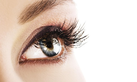 $42 for $55 Worth of Eyelash Services  Hollywood Hair & Design/SSP