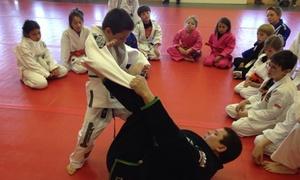 West Coast World Martial Arts/rcj Machado Brazilian Jiu Jitsu: Four Weeks of Unlimited Martial Arts Classes at West Coast World Martial Arts/RCJ Machado Brazilian Jiu-Jitsu (55% Off)
