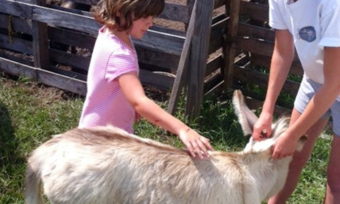 Legare Farms - Johns Island: Myrtle Maze Visit for Two or Four at Legare Farms (Half Off)