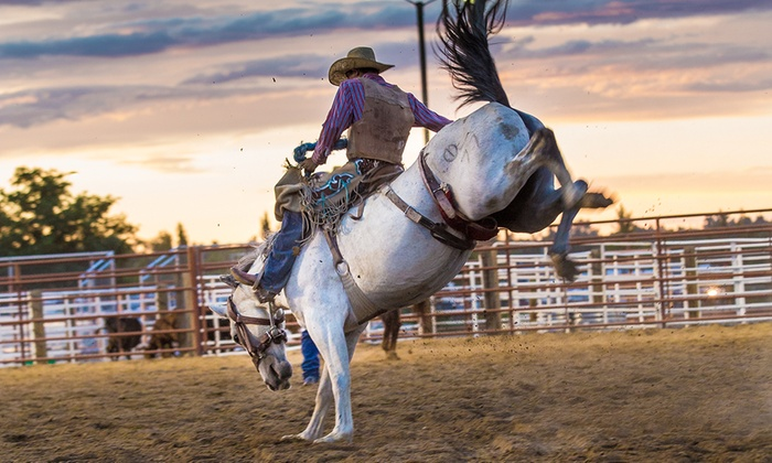 Boulder County Fair - Longmont: Admission for 2 or 4 to Events at the Boulder County Fairon August 3, 8, 9, or 10 (Up to 45% Off). Three Options.